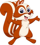 Nette Eichhörnchenkarikatur Stockfotografie