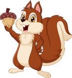 Nette Eichhörnchenkarikatur, die Eichel hält vektor abbildung