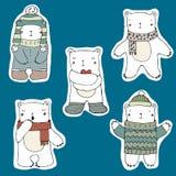 Nette Eisbären Stockbilder