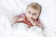 Nette entzückende zwei Monate Baby, die Faust saugen Stockfoto