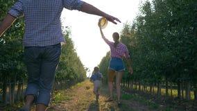 Nette Familie von den Gärtnern, die mit Kind im Obstgarten während des Erntens in der Hintergrundbeleuchtung spielen