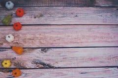 Nette Filzkürbisse und -kürbise, gelassen ausgerichtet auf hölzernem Hintergrund lizenzfreie stockfotografie
