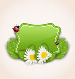 Nette Frühlingskarte mit Blumengänseblümchen, Blätter, Marienkäfer Stockfotos