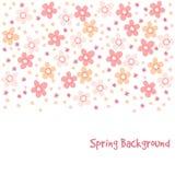 Nette Frühlingskarte mit Kirschbaum blüht, Illustration, Blumenmusterhintergrund Stockbild