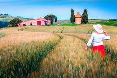Nette Frau, welche die Ansicht auf den Korngebieten, Toskana, Italien genießt lizenzfreie stockfotografie