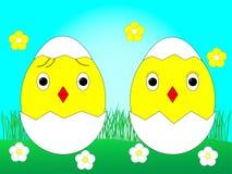 Nette gelbe Hühner in der Eierschale, Ostern-Feiertagskonzept lizenzfreie abbildung