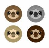 Nette Gesichtsträgheit, Tiere Trägheit auf weißer Hintergrund Vektor-Illustration lizenzfreie abbildung
