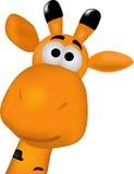 Nette Giraffe, Stockfotos