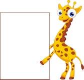 Nette Giraffenkarikatur mit leerem Zeichen stock abbildung