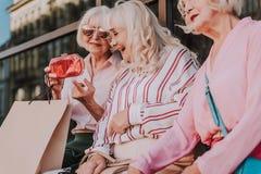 Nette Großmütter haben eine gute Zeit lizenzfreies stockbild