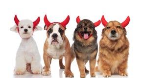 Nette Gruppe von vier verschiedenen Teufelhunden mit roten Hörnern stockfoto