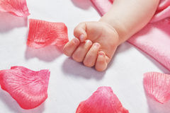 Nette Hand das schlafende Baby und um die Blumenblätter von Rosen. Lizenzfreies Stockbild