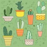 Nette Hand gezeichnete Kaktuspflanze-Vektor-gesetzte Illustrationen Lizenzfreie Stockfotos