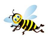 Nette helle lustige Biene, vektorabbildungsisolat Stockfotografie