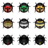 Nette Insektansammlung Stockfotografie
