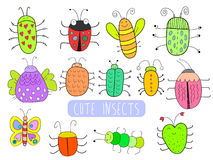 Nette Insekte Stockfotografie