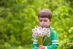Nette 4 Jahre alte Junge mit Löwenzahn draußen am sonnigen Sommertag Lizenzfreies Stockbild