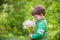 Nette 4 Jahre alte Junge mit Löwenzahn draußen am sonnigen Sommertag Lizenzfreie Stockfotografie