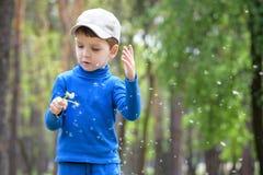 Nette 4 Jahre alte Junge mit Löwenzahn draußen am sonnigen Sommertag Stockfotografie