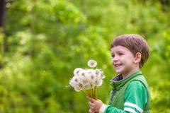 Nette 4 Jahre alte Junge mit Löwenzahn draußen am sonnigen Sommertag Lizenzfreie Stockfotos