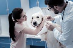 Nette junge Frau, die ihren Hund umarmt Lizenzfreie Stockfotografie