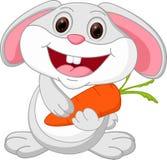 Nette Kaninchenkarikatur hält Karotte Stockfoto