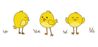 Nette Karikaturhühner lokalisiert auf Weiß Stockfoto
