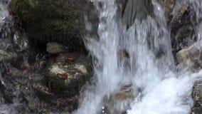 Nette Kaskade des Gebirgswasserfalls stock video