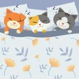 nette Katze der Charakterkarikatur, die auf dem Bett schläft stock abbildung