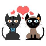 Nette Katzen in der Liebe lizenzfreie abbildung
