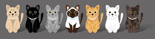 Nette Katzengruppe Stockfotos