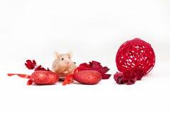 Nette kleine goldene Maus sitzt unter trockenen roten Blumen und glänzenden dekorativen Herzen Stockbild