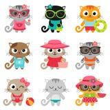 Nette kleine Katzen Stockfoto