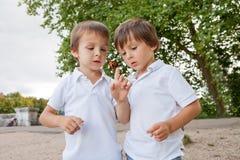 Nette kleine Kleinkindjungen, spielend mit dem Marienkäfer im Freien im p lizenzfreies stockfoto