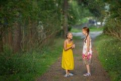 Nette kleine Mädchen, die aufgeregt im Park sprechen gehen Stockbild
