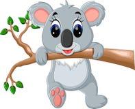Nette Koalakarikatur Lizenzfreies Stockfoto