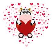 Nette Kuh-Valentinsgrußliebe Lizenzfreie Stockfotos