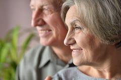 Nette ältere Paare Lizenzfreies Stockfoto