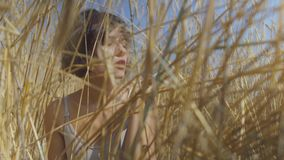 Nette Modefrau mit der rauchenden Zigarette des kurzen Haares, die unter dem Weizenfeld weg schaut sitzt Überzeugtes sorgloses Mä stock footage