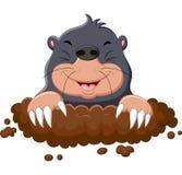 Nette Mole der Karikatur Stockbild