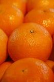 Nette Orangen Stockfotos