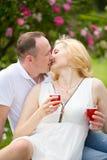 Nette Paare, die Rotwein auf einem Picknick lächelt an einander an einem sonnigen Tag trinken Lizenzfreies Stockbild