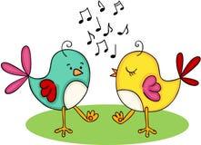 Nette Paare von den singenden und tanzenden Vögeln Stockfoto