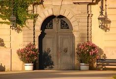 Nette Palasttüren der alten Art Stockfotografie