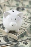 Nette Piggy Querneigung auf einem Stapel Bargeld Stockfoto