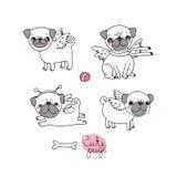 Nette Pugs hunde Stockbilder
