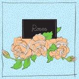 Nette Rosen auf hellblauem Stockbilder