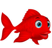 Nette rote Fischkarikatur Lizenzfreies Stockfoto