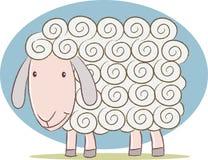 Nette Schafe Stockfotos