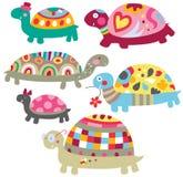 Nette Schildkröten Lizenzfreie Stockbilder